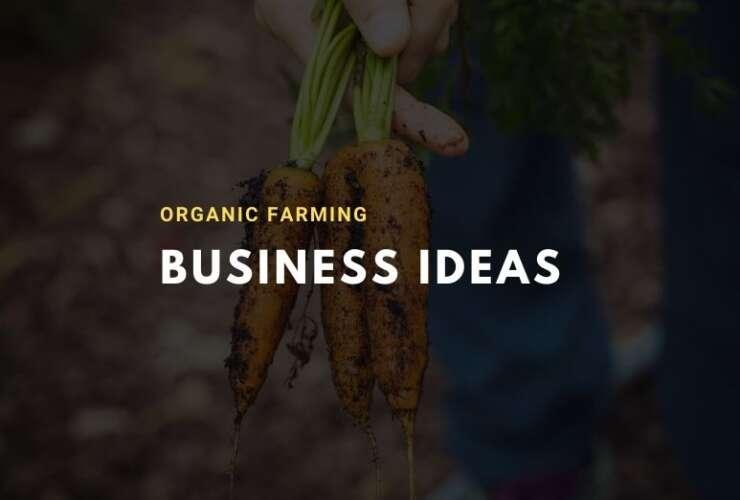 Organic Farming Business Ideas