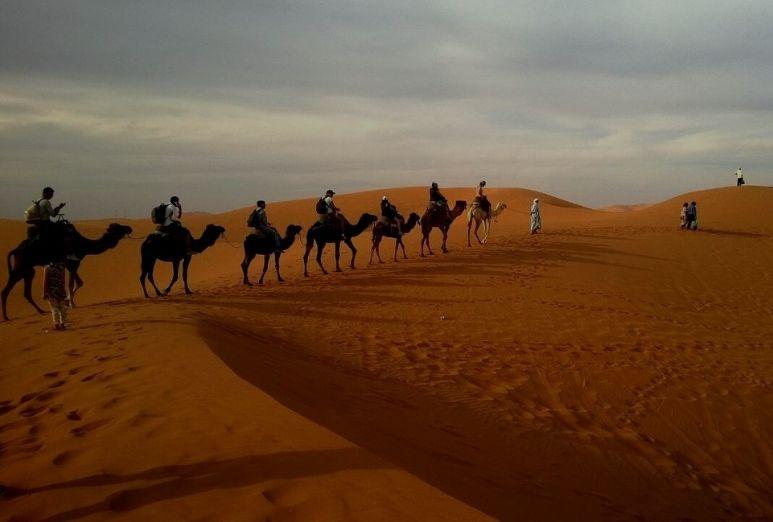 THAL Desert Pakistan